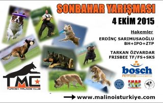 sonbahar_kupasi_afis