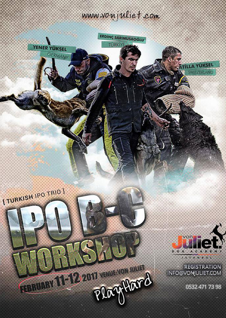 IPO B-C Workshop