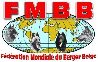 fmbb logo