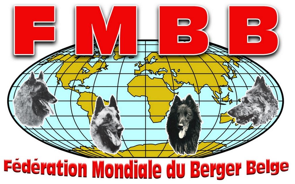 FMBB 2020 Dünya Şampiyonası iptal edildi!